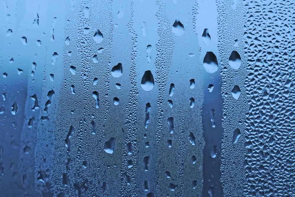 umidità in casa opinioni